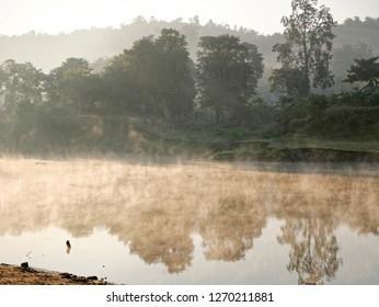 Early morning fog settled on river bed at Kaziranga, Assam, India