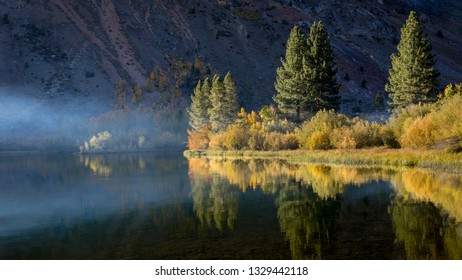 Early morning at Intake lake during fall colors. Trees are a colorful yellow and gold. Bishop California