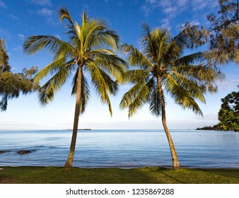 Early morning landscape photo with a low horizon, looking through the palm trees to the calm blue waters of Anse Vata Bay, Noumea, New Caledonia.