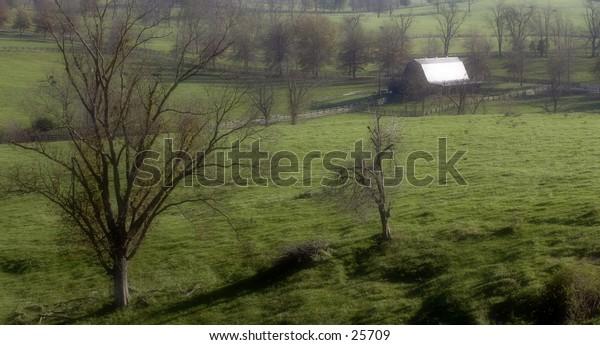 Early morning light casts shadows across this kentucky farm.