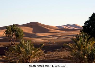 Early morning light on Erg Chebbi, Merzouga, Morocco