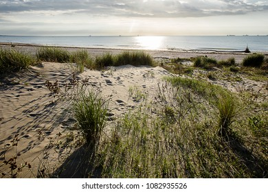 early morning light over sandy dunes at the beach