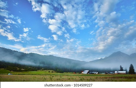Early morning mist rising over a field near Leavenworth Washington