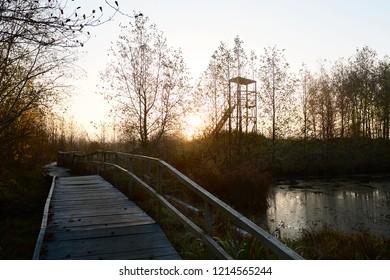Early Morning on the marshes. Yelnya, Belarus