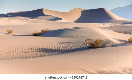 Early Morning On The Mesquite Flat Sand Dunes. Death Valley National Park, California, USA.
