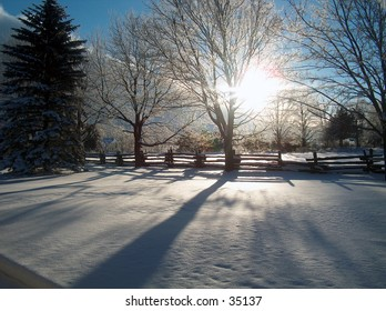 early morning shot, sun just coming up, glow, long shadows on the newly fallen snow!!