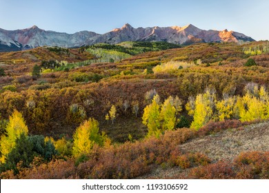 Early morning sun hits the tops of the peaks of the Dallas Divide above the Tcoloful tableau of glorious Autumn colors on a crisp dawn morning in Colorado.