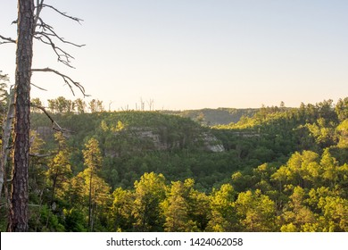 Early Morning Sunlight illimunates the Red River Gorge in Kentucky.