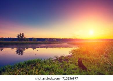 Early morning, sunrise over lake. Misty morning, rural landscape, wilderness, mystical feeling