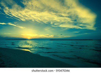 Early morning, sunrise over sea. Twilight time on the beach. Wild nature. Trendy blue color