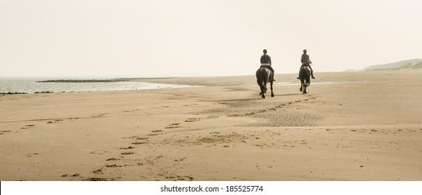 Early in the morning two young women riding  together on horses at the North Sea beach in the Netherlands.