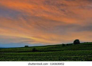 Early morning vibrant sky in a field in France