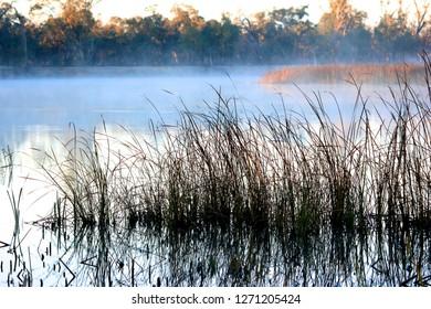 Early morning view on the Murrumbidgee River near Wagga Wagga, NSW, Australia.
