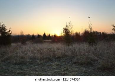 Early Morning at Yelnya marshes, Belarus