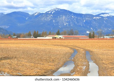 An early Spring field of grass and rain soaked farm tracks lead to a picturesque farm in a Canadian valley.
