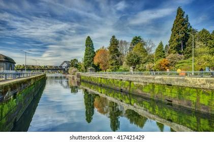 Early Spring Foliage reflects in the Waters of the Ballard Locks in Seattle, Washington