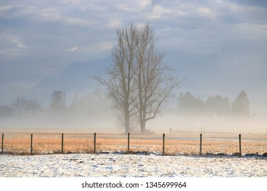 Early Spring and melting snow produces a blanket of mist above the agricultural fields.