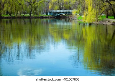 Early spring in the park. A scenic view of the lake and bridge in the trees. The sky is reflected in lake. Background