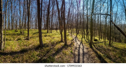 Early spring in the Thayatal National Park in Lower Austria
