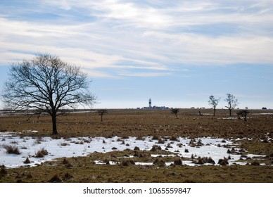 Early springtime at the fields by the lighthouse at Ottenby on the swedish island Oland in the Baltic Sea