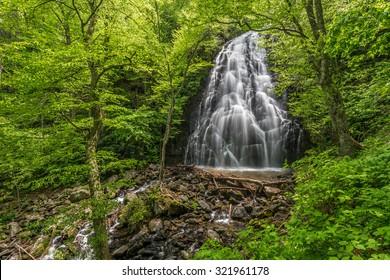 Early summer greens and cascading water at Crabtree Falls along the Blue Ridge Mountains in North Carolina.