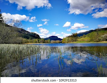 Early Summer at Loch Lubnaig, Trossachs, Stirlingshire, Scotland