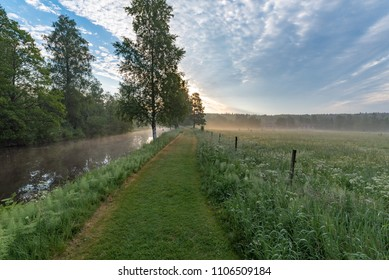 early summer morning at a trail near a channel
