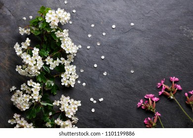 Early summer white and pink flower blossoms on slate with copy space