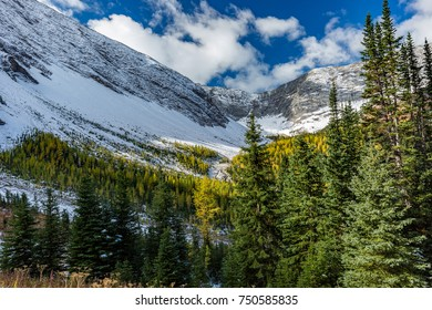 Early Winter in the Canadian Rockies