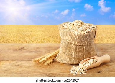 Ears of oats and oatmeal in bag on table with field on the background. Uncooked porridge