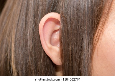 Ears protruding from under the hair, otolaryngologist treatment of diseases in the ears, hearing loss, eavesdropping, Otoplasty plastic surgery, elf ears, lop-eared big-eared