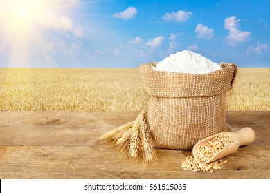 Ears of wheat and flour in bag on table on field background. Photo with copy space area for a text