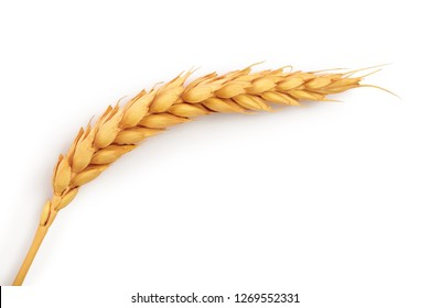 ears of wheat isolated on white background. Top view