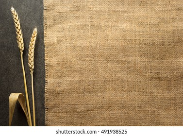 ears of wheat on  black background texture