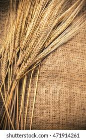 Ears of wheat on a sackcloth