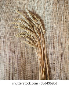 Ears of wheat. Vintage background