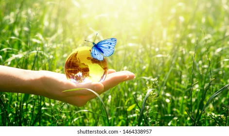 Earth crystal glass globe and butterfly with blue wings in human hand on grass background. Saving environment and clean green planet concept. Card for World Earth Day concept.