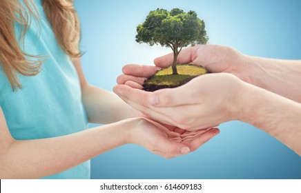 earth day, environment, people, charity and family concept - close up of father and girl hands holding green oak tree over blue background