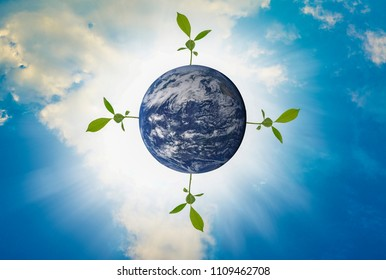 Earth, four trees growing on top, With bright sky as the background, Abstract concept about global warming worldwide,Elements of this image furnished by NASA. (Photo manipulation)