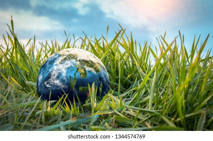 Earth globe on the grass. Save the nature. Enviroment. Earth day theme. Elements of this image furnished by NASA
