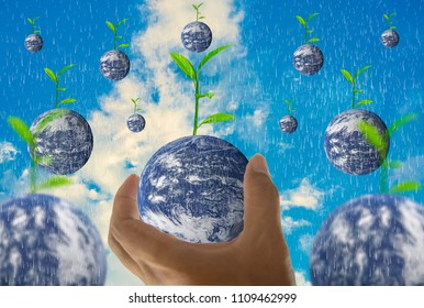 Earth, in a handful, with trees growing on top, With bright sky as background and rain,Abstract concept about global warming worldwide,Elements of this image furnished by NASA. (Photo manipulation)
