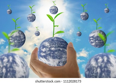 Earth, in a handful, with trees growing on top, With the bright sky as the background,  Abstract concept about global warming worldwide, Elements of this image furnished by NASA. (Photo manipulation)