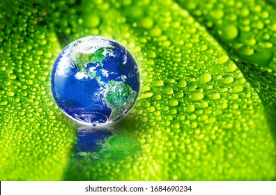 Earth on green leaf with drops of water in soft sunlight, The world need refreshment concept and Environmental concept, Elements of this image furnished by NASA