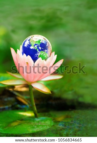 Earth On Lotus Flower Safe Earth Stock Photo Edit Now 1056834665