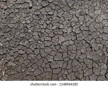 Earth soil cracked from lack of water. Climate change related background. In drought time you can find this everywhere, which is very uncommon in a place like The Netherlands.
