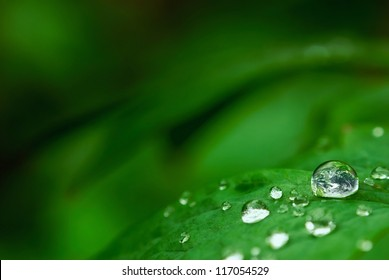 Earth in tiny drop on leaf