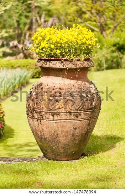 Earthenware Jug Flowers Public Garden Villa Stock Photo ...