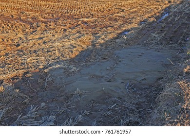 Earthquake Damage Site, Pohang, Korea-November 2017: An earthquake occurred on November 15th. It is the site of liquefaction occurrence in field.