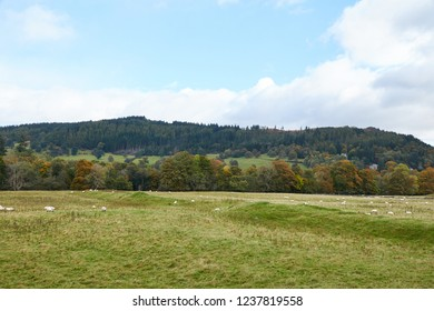 The Earthwork Remains of a Roman Encampment, near Callander in Perthshire.
