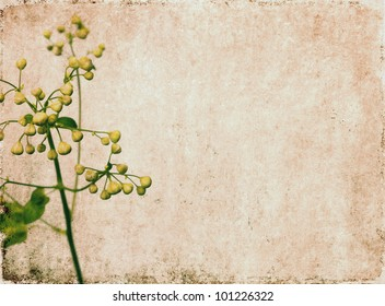 Earthy floral background image and useful design element